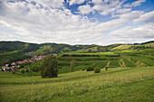 Hills and vineyards under clouded sky, Kaiserstuhl, Baden-Wuerttemberg, Germany, Europe
