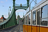 Tram on Liberty Bridge, Gellert Hotel in the background, Budapest, Hungary, Europe
