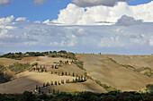 Zypressenalle unter Wolkenhimmel, Crete, Toskana, Italien, Europa