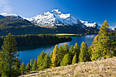 Lake Sils and snow covered mountains in the sunlight, Piz da la Margna, Upper Engadin Grisons, Switzerland, Europe