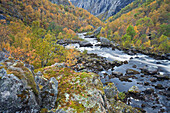 Gorge of the bjoreia river, flowing into Voringfossen, Mabodalen, Hordaland, Norway