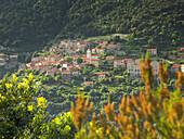 View of Ota, mountain village, Porto, Corsika, France