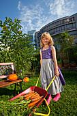 Girl harvesting carrots pushing a wheelbarrow, Urban Gardening, Urban Farming, Stuttgart, Baden Wurttemberg, Germany