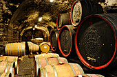 Wine barrels in the winery Bolzano, Bolzano, South Tyrol, Italy, Europe