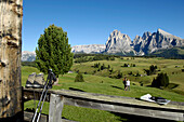 Binoculars and walking sticks lying on the railing, Langkofel Range, Dolomites, South Tyrol, Trentino-Alto Adige, Italy