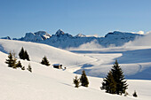 Fresh snow, Puflatsch, Seiser Alm, Valle Isarco, South Tyrol, Trentino-Alto Adige, Italy