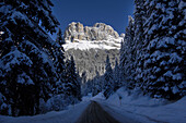 Karerpass, Rosengarten, Rosengarten Group, UNESCO World Nature Site, Dolomites, South Tyrol, Trentino-Alto Adige, Italy