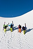 Skiers at ascent under blue sky, Alto Adige, South Tyrol, Italy, Europe