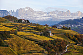 Farms in the wine region, Rosengarten in the background Alto Adige, South Tyrol, Italy