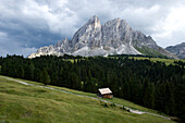 Peitlerkofel, Nature Reserve Park Puez Geisler, Alto Adige, South Tyrol, Italy