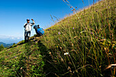 Farmer mowing alm grass, Eggen Valley, Nova Levante, Dolomites, Alto Adige, South Tyrol, Italy