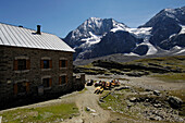Alpine hut, Koenigspitze, Kings Ortler Alps, Alto Adige, South Tyrol, Italy