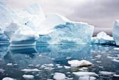Iceberg floating in the sea, Paradise Harbor, Antarctic Peninsula, Antarctica