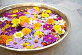 Bowl of flowers at Castle Bijaipur, Rajasthan India