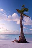 Man using laptop beside palm tree at dawn on Worthing Beach, Barbados, Barbados