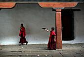 Bhutanese boy monk firing a toy gun, Wangdiphodrang, Bhutan