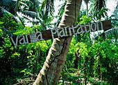 A sign for a vanilla plantation at L'union Estate on La Digue island, Seychelles.