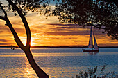 Yacht sailing on lake at sunset, Sunset over Lake Malaren, Sundbyholm Manor, Sweden.