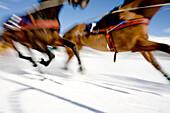 Ski joring race, St Moritz, Switzerland