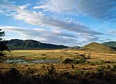 East African landscape, Tanzania