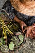 Woman selling lotus flower seed heads, Ubon Ratchathani, Isan, Thailand, Asia