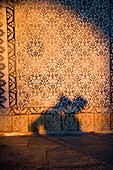 People's shadows on Yeni Camii Mosque, close up, Istanbul, Turkey