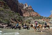 USA, Utah, Zion National Park, horse riders crossing Virgin river