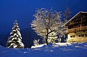 France, Alps, Haute Savoie, snowed chalet by night