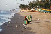 Sénégal, Kafountine, Woman washing fish