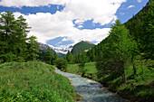 France, Alps, Queyras, region of Ceillac