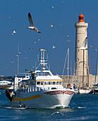 France, Languedoc, Hérault, Sète harbour