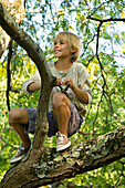 Boy with slingshot in a tree