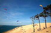 France, Aquitaine, Gironde (33) - Le Pyla sur Mer, Dune du Pilat and Bassin d'Arcachon, paragliding