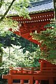 JAPON, NIKKO, Toshogu shrine