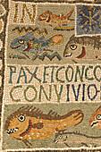 Algeria, Tipaza museum, mosaic