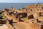 Algeria, Tipaza, roman ruins