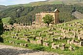 Algeria, Kabylia, Djemila roman ruins