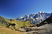 Wetterhorn, Eiger, Moench and Jungfrau, Sefinenfurgge, UNESCO World Heritage Site Jungfrau-Aletsch protected area, Bernese Oberland, canton of Bern, Switzerland