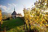 Ehrentrudis chapel, Markgraflerland, near Freiburg im Breisgau, Black Forest, Baden-Wurttemberg, Germany