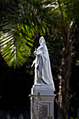 Statue of Queen Victoria infront of the parliament, Cape Town, Western Cape, South Africa