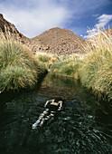 Man swimming in hot stream at Puritama, Puritama, near San Pedro de Atacama, Chile