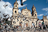 Pigeon flying away in front of Primate Cathedral, Bogota, Colombia