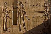 Large reliefs on walls of Second Pylon, Temple of Isis, Philae Island, near Aswan, Egypt