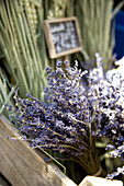 Close-up of Lavender, Provence, France