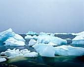 Icebergs floating in the sea, Disko Bay, Greenland