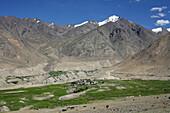 Remote village at hoot of Indian Himalayas, Ladakh, India