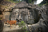 Sacred cow at Unakoti, Tripura, North East States, India.  Unakoti is a Shaiva pilgrimage site  and it's the  largest bas relief sculpture in India.