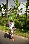 Woman shading head with leaf, Ubud, Bali, Indonesia