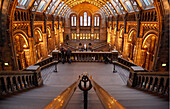 'Natural History Museum, London, England, UK, Europe 