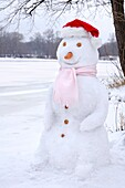 Snowman wearing Christmas hat and skarf  Wintertime nature scenic